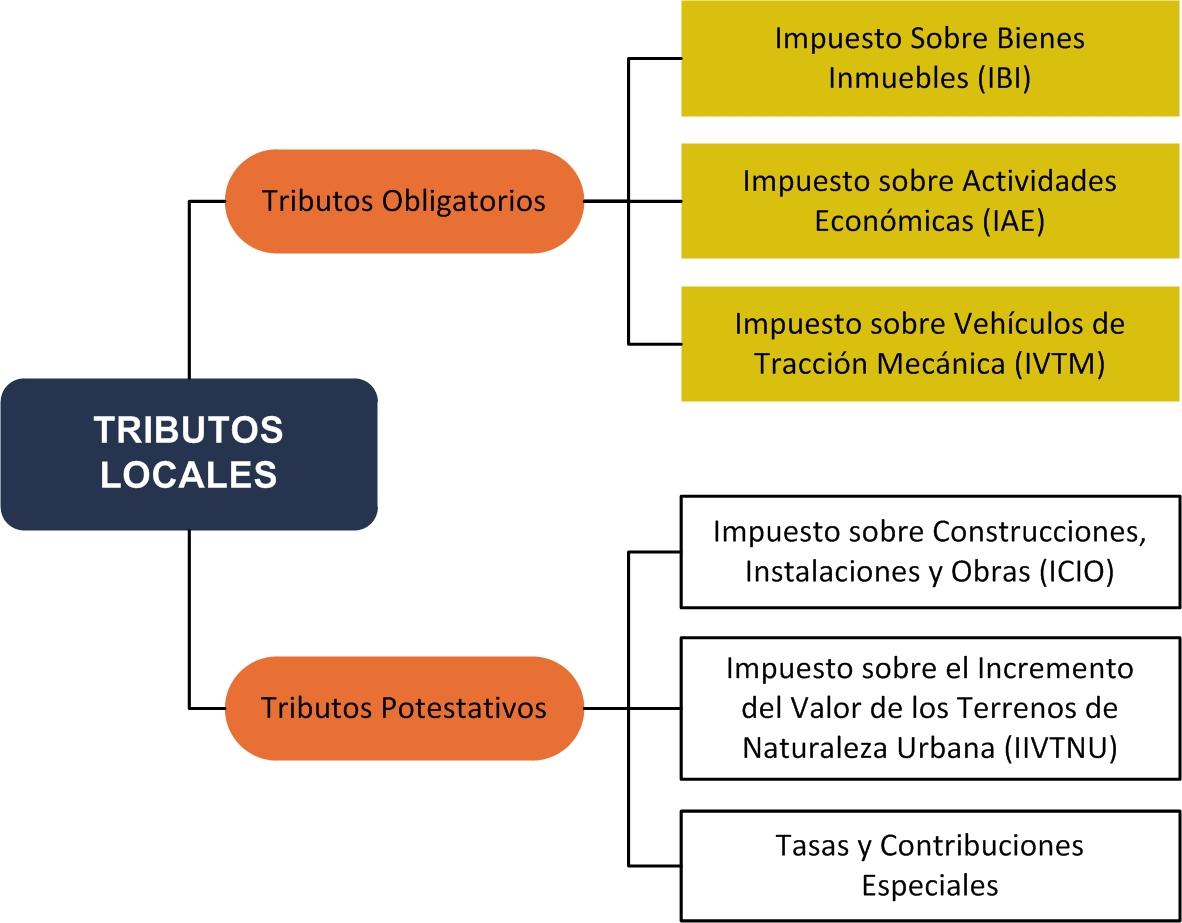 Estructura Y Funcionamiento De Las Haciendas Locales