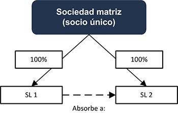 Sociedad matriz (socio único) - INEAF