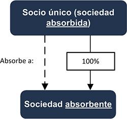 Socio único (sociedad absorbida) - Sociedad absorbente - INEAF