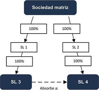 Sociedad matriz - INEAF
