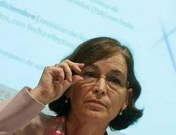 Belén Romana, Presidente de la SAREB - INEAF
