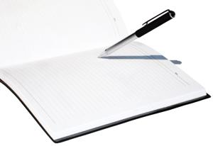 Problemática contable de los gastos de constitución y de primer establecimiento - INEAF