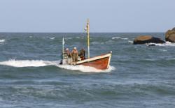 INEAF cotización 2013 seguridad social trabajadores mar